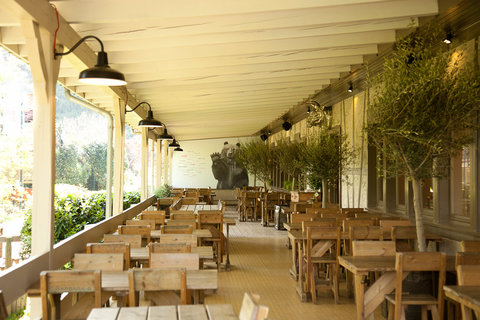 FOREST'BAR COMPLET, TERRASSE ACCESSIBLE